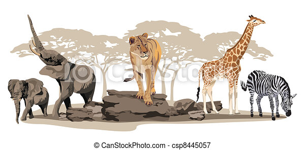 African Animals - csp8445057