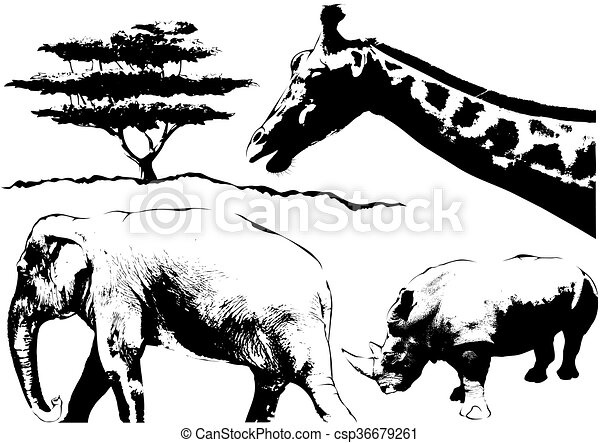 Line Drawings Of African Animals : African animals sketch black and white illustration clip art