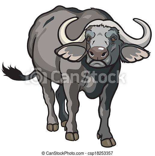 african buffalo african cape buffalo wild animal of africa front rh canstockphoto com buffalo clip art images buffalo clip art silhouette