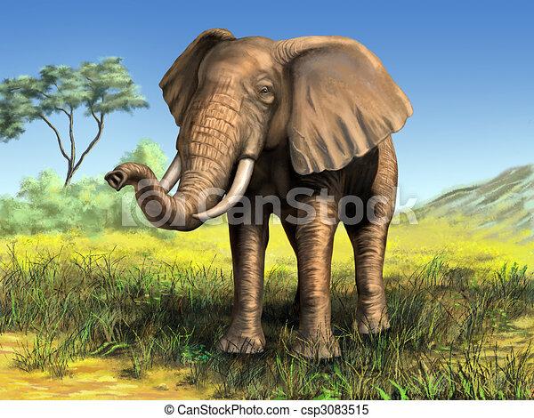 African elephant - csp3083515