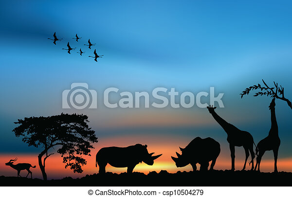 Line Drawings Of African Animals : African savanna with acacia and animals at the sunset vectors