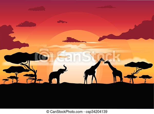 Line Drawings Of African Animals : African sunset in the savannah with silhouette of animals