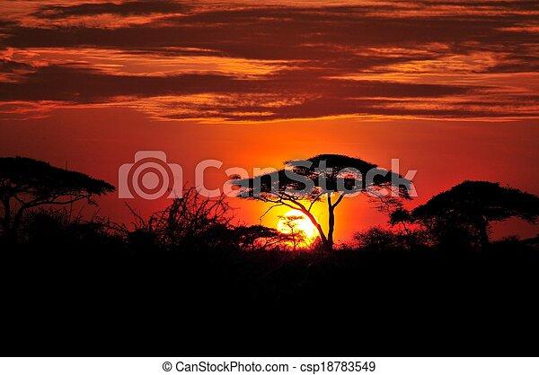 african sunset - csp18783549