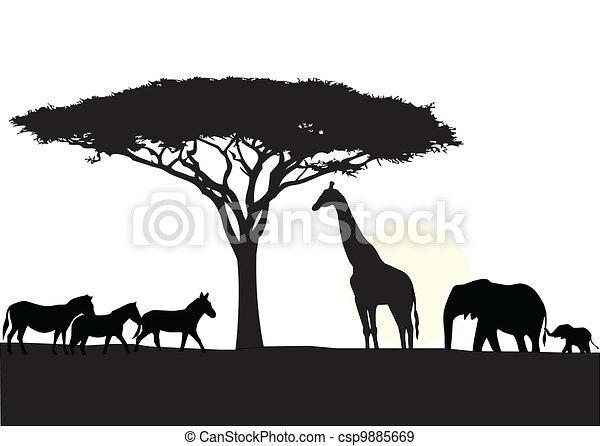 afrique, silhouette, fond - csp9885669