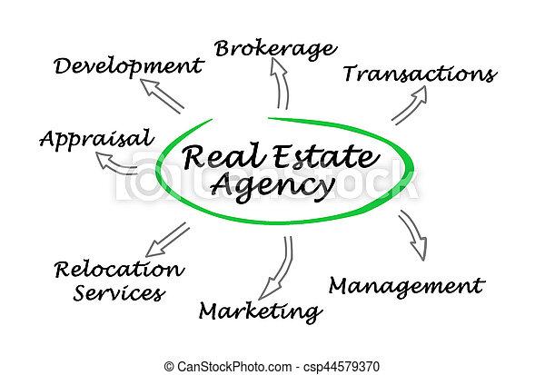 Agente inmobiliario - csp44579370