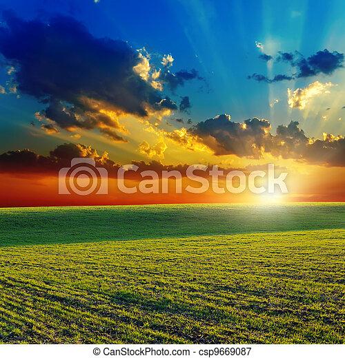 agricole, sur, coucher soleil, champ vert - csp9669087