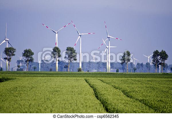 Granja ambiental - csp6562345