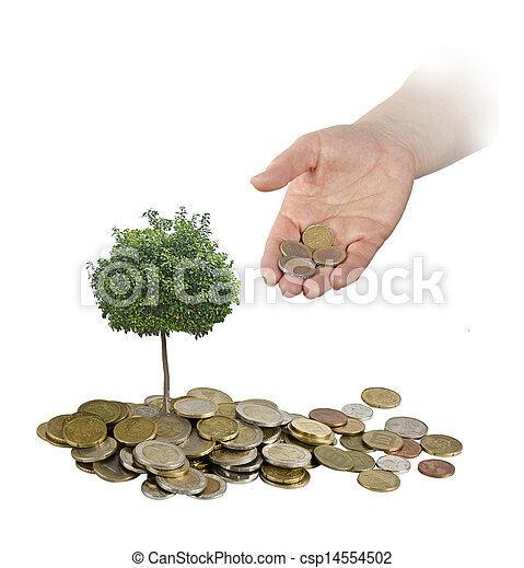 agricultura, inversión - csp14554502