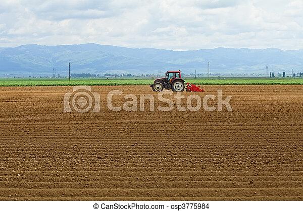 agricultura, -, semear, trator, batatas - csp3775984