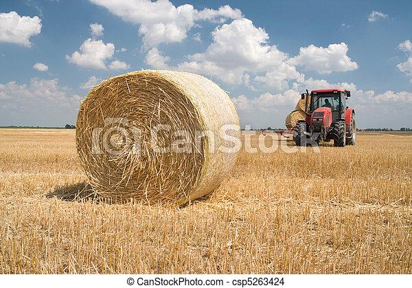 agricultura, -, trator - csp5263424
