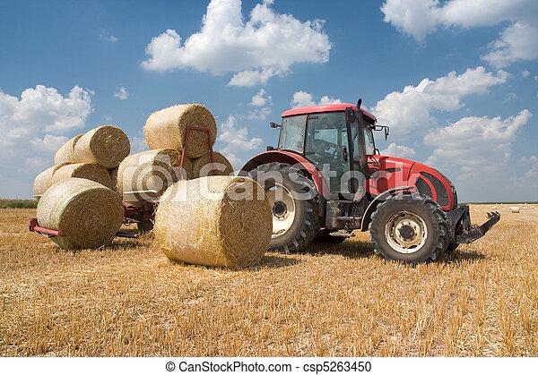 agricultura, -, trator - csp5263450