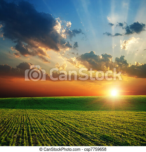 agricultural green field and sunset - csp7759658