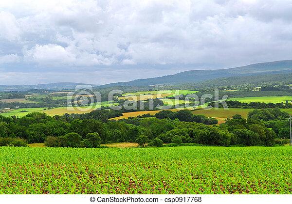 Agricultural landscape - csp0917768