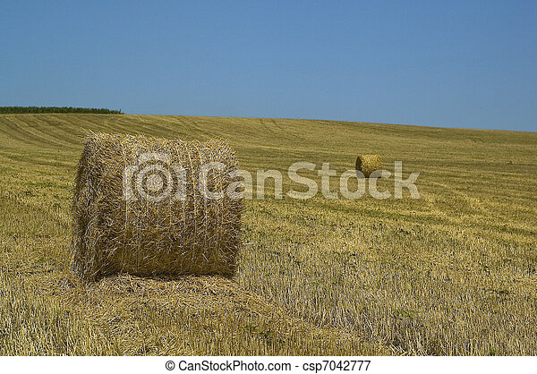 agricultural landscape with blue sk - csp7042777