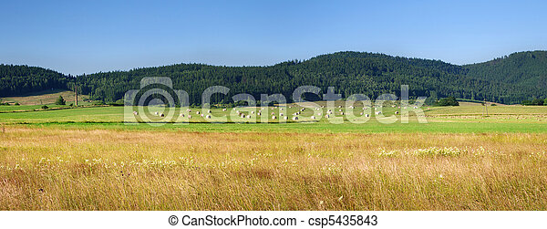 Agricultural panorama in the hills - csp5435843