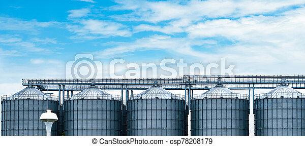 Agricultural silo at feed mill factory. Big tank for store grain in feed manufacturing. Seed stock tower for animal feed production. Commercial feed for livestock, swine and fish industries. - csp78208179