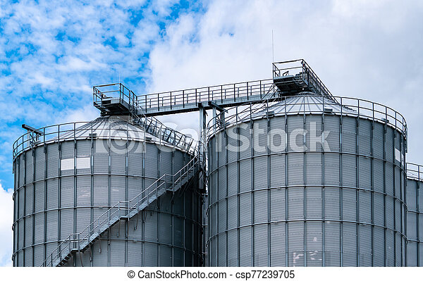 Agricultural silo at feed mill factory. Big tank for store grain in feed manufacturing. Seed stock tower for animal feed production. Commercial feed for livestock, swine and fish industries. - csp77239705