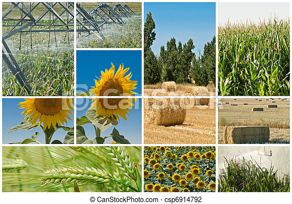 Agriculture and ecology. - csp6914792