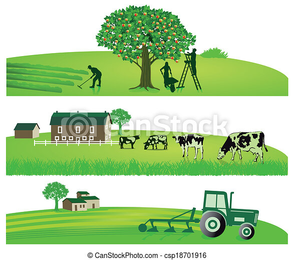 Agriculture and Garden - csp18701916