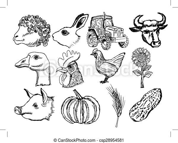 agriculture - csp28954581