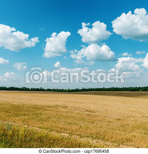 agriculture field after harvesting and clouds over it - csp17695458