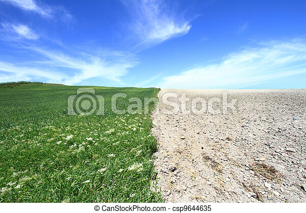 Agriculture field with cloudscape  - csp9644635