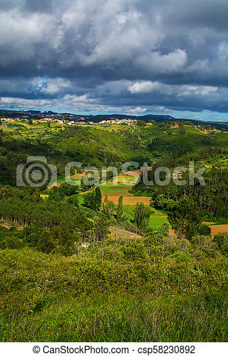 Agriculture fields in Ericeira - csp58230892