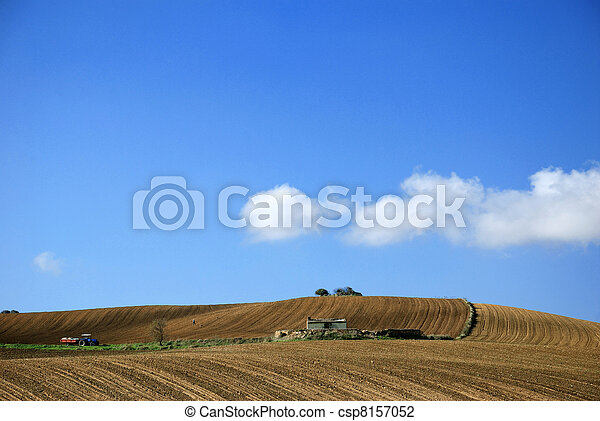 agriculture in a sunny day - csp8157052