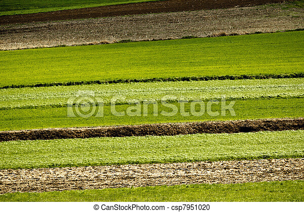 Agriculture layers - fields and meadows - csp7951020