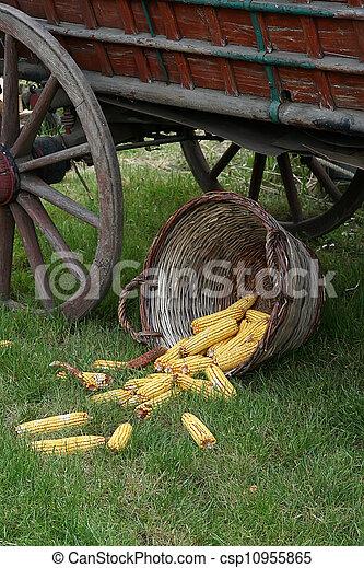 Agriculture - csp10955865