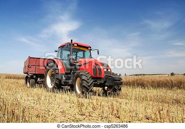 Agriculture - csp5263486