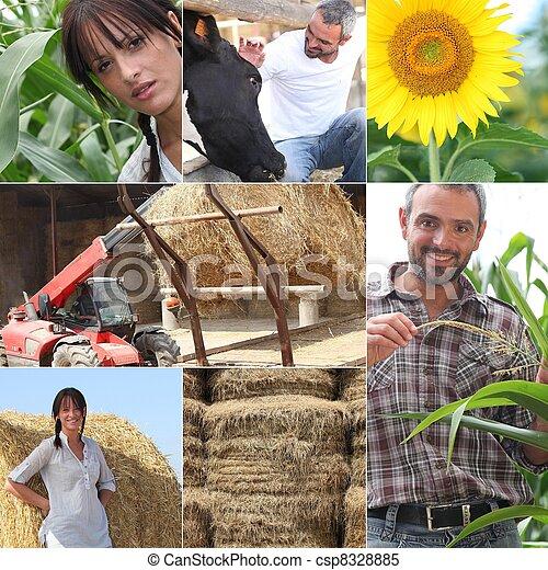 agriculture - csp8328885