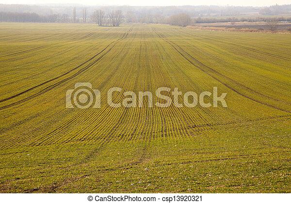 Agriculture - csp13920321