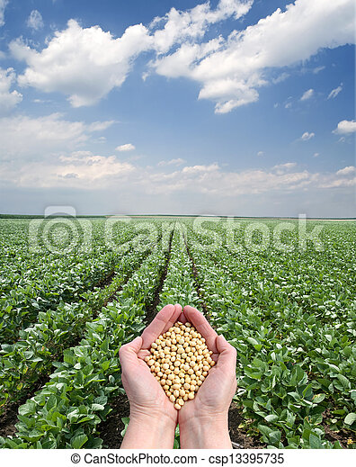 Agriculture - csp13395735