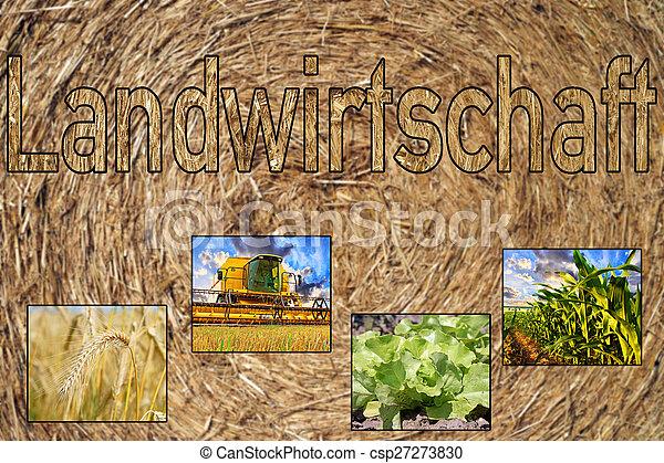 Agriculture - csp27273830