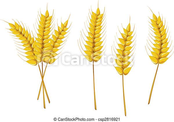 Agriculture symbols - csp2816921