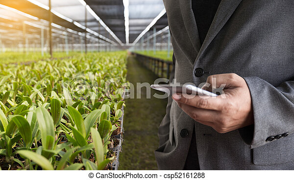 agriculture technology concept man Agronomist Using a Tablet in an Agriculture Field read a report - csp52161288