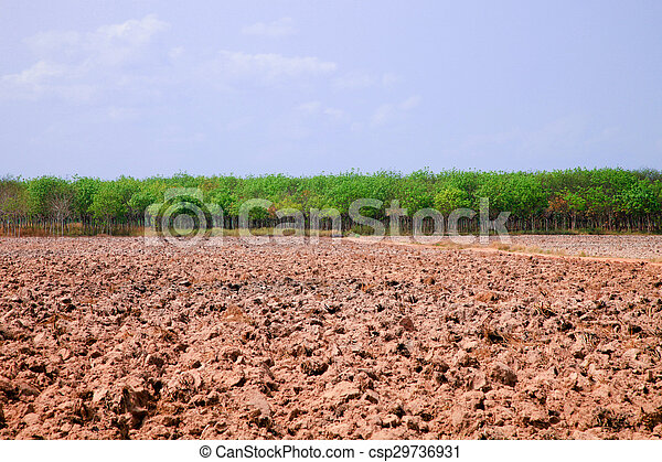 Agriculture tractor sowing seeds an - csp29736931