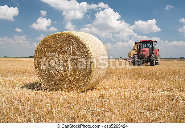 Agriculture - tractor - csp5263424
