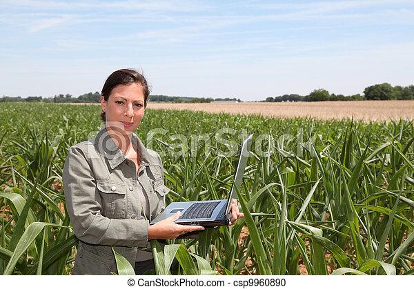 agronomist, kukurydziane pole - csp9960890