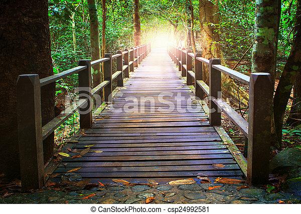 Perspectiva del puente de madera en el bosque profundo cruzando el arroyo del agua - csp24992581