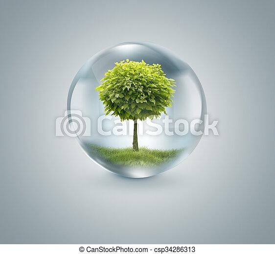 Una gota de agua con un árbol dentro - csp34286313
