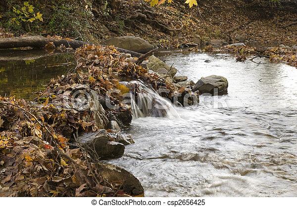 Aguas flotantes -1 - csp2656425