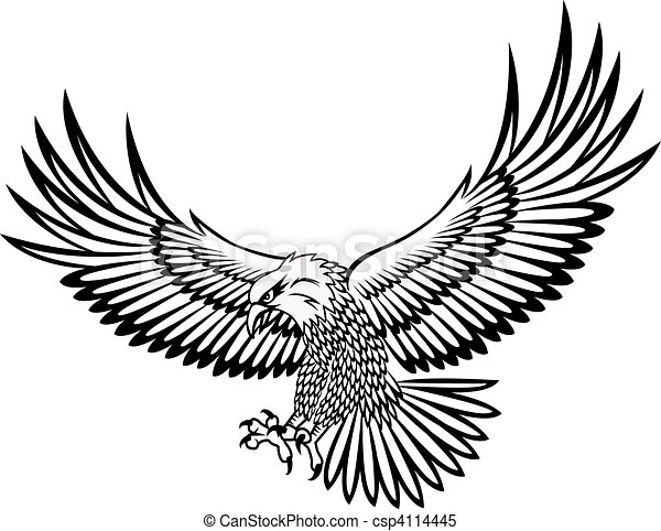 aigle, vecteur - csp4114445