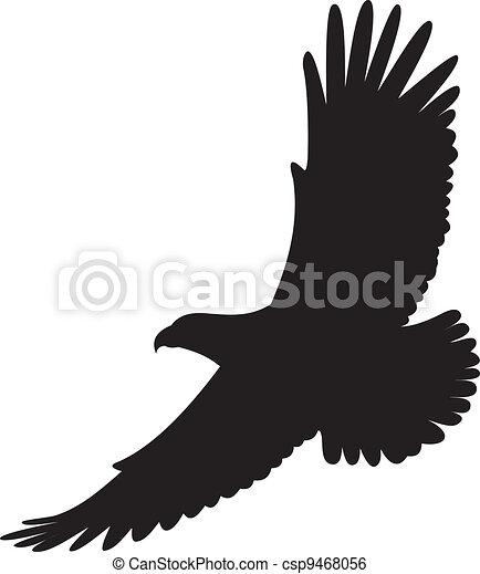 aigle, vecteur - csp9468056