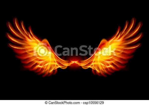 ailes, brûlé - csp10556129