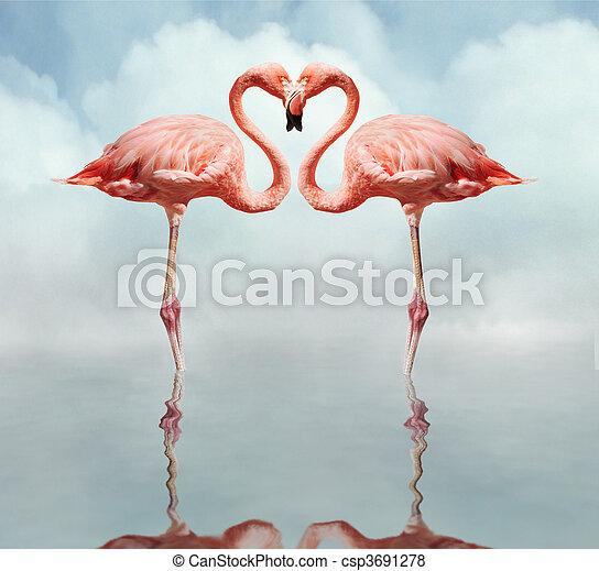 aimer oiseaux - csp3691278