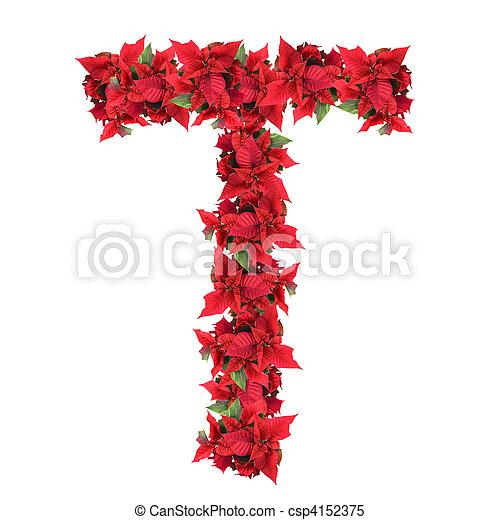 Carta de flores de Navidad rojas aisladas en blanco - csp4152375
