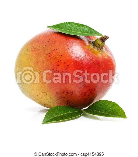 Fruta fresca de mango con hojas verdes aisladas - csp4154395