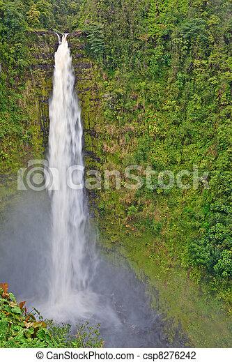 Akaka Falls, Big Island, Hawaii - csp8276242
